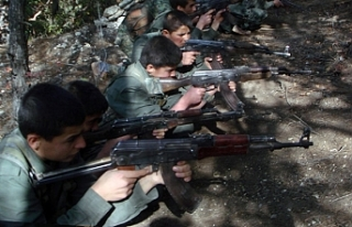 """BM İnsan Hakları Konseyi: """"YPG çocukları..."""