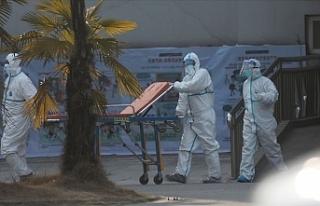 Çin'de görülen koronavirüs salgını ABD'ye...