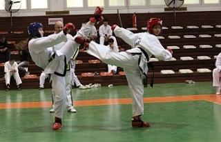 Eşref Bitlis Taekwondo Karate Budo (Kurash-Wushu)...
