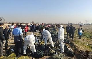 İran'da düşen yolcu uçağı - Tahran yönetimi:...