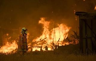 Kuvvetli rüzgar yangınlara müdahaleyi güçleştiriyor