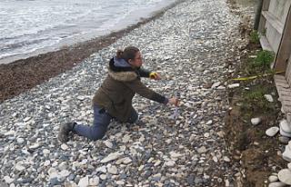 Perivolia/Bahçalar köyü plajında kazı başladı