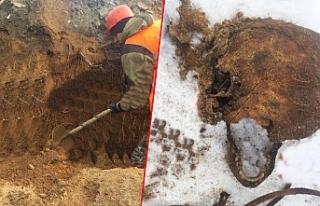Kazı yapıldı, mafya üyelerinin iskeleti ortaya...