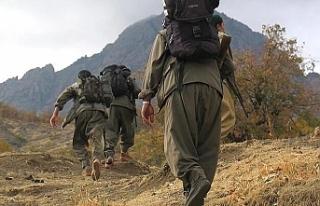 Suriye'nin kuzeyinden kaçan 3 PKK'lı terörist...