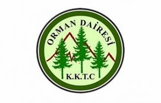Ormancılık Günü faaliyetleri ertelendi
