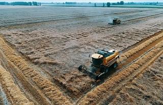 Yeni dünya düzeninde gıda ve tarım çok daha önemli...