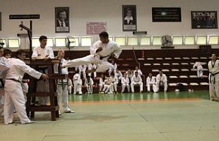 """Taekwondo'da """"Gençlik Kupası"""" sonuçları..."""