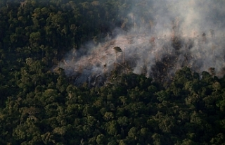 Brezilya'da Amazon'daki ormansızlaşma...
