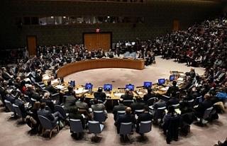 İrlanda ve Norveç BM Güvenlik Konseyine geçici...