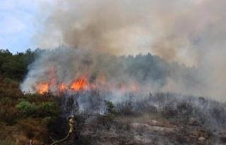 Çeşitli bölgelerde yangın: Çok sayıda balya,...