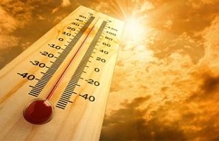 KKTC'de bir hafta boyunca sıcak hava etkili olacak