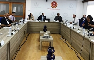 Meclis Ekonomi Komitesi bir kararname bir de tasarıyı...