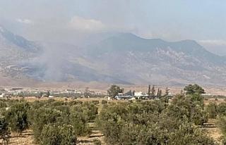 Alevkayası yolunun kuzeyinde yangın