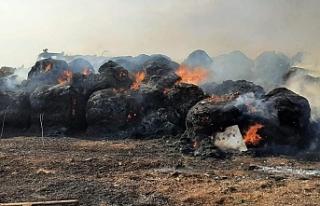 İncirli'de arazi yangını