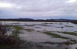 Karpaz bölgesinde yağmur bekleniyor