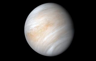 Venüs'te yaşam olabileceği iddia edildi