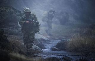 Pençe Harekatı bölgesinde 2 asker şehit oldu,...