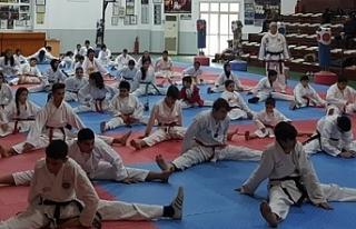 Dr. Küçük Taekwondo Müsabakası