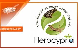 Kıbrıs Herptil Araştırma ve Gözlem Topluluğu...