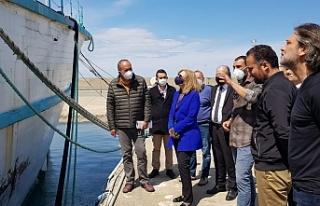 Canaltay, Girne Turizm Limanı'nda incelemelerde...