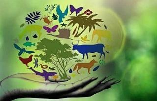 Dünya Biyolojik Çeşitlilik Günü'ne dikkat çekmek...