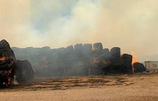 Paşaköy'de yangın