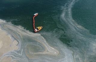Marmara Denizi'nden 3 günde toplam 733 metreküp...