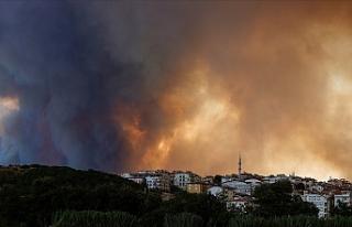 """AFAD: """"Manavgat'taki yangında 3 vatandaşımız..."""