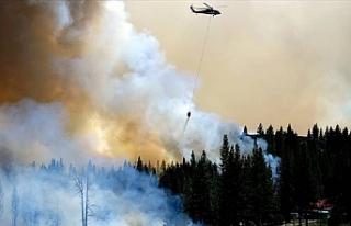 California'da devam eden orman yangınlarında...