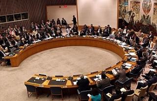 Rumlar, Güvenlik Konseyine başvurdu