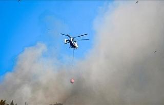 Türkiye genelindeki 98 orman yangınının 88'i...