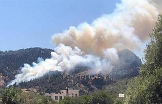 Bir haftada 10 yangın