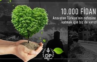 DP, Türkiye'de yangından etkilenen ormanlık alanlar...