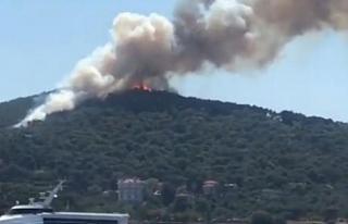 Heybeliada'da orman yangını büyüyor
