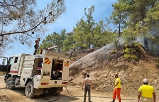 KKTC Sivil Savunma ekibi Manavgat'ta yangına...