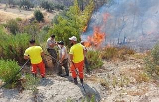 Orman Dairesi ekibi Manavgat'ta