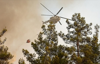 Türkiye genelindeki 112 orman yangınının 107'si...