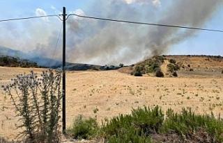 Ülkenin bir çok noktasında yangın meydana geldi
