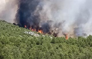 Alevkayası'ndaki yangın söndürüldü
