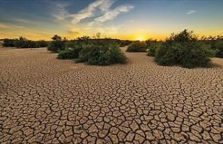 Birçok ülke iklim değişikliğiyle mücadelede...