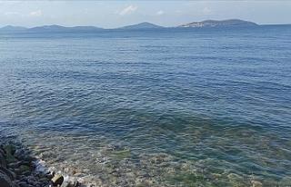 Marmara Denizi'nde yeni tehlike 'oksijen...