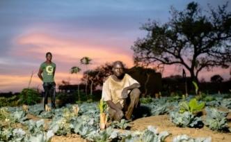 İklim krizi raporu: Kriz yoksulları vuracak, dünya hazır değil