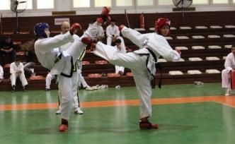 Eşref Bitlis Taekwondo Karate Budo (Kurash-Wushu) Şampiyonası yapıldı
