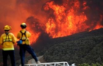 California'daki yangınlarda can kaybı 81'e yükseldi