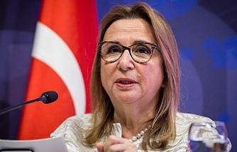 Türkiye ABD'ye açtığı 'çelik' davasını kazandı