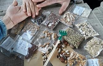 Tohum takas şenlikleri düzenleniyor