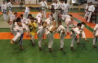 Ulusal Egemenlik ve Çocuk Bayramı Taekwondo şampiyonası