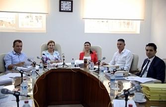 Dilekçe ve Ombudsman Komitesi yeni başkanı ile toplandı