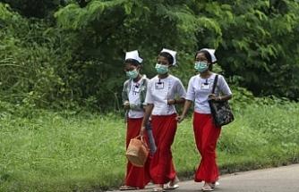 Myanmar'da domuz gribi 54 can aldı