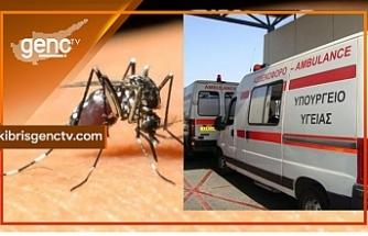 Güney'de 9 kişide Batı Nil Virüsi tespit edildi